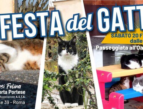 FESTA DEL GATTO, SABATO 20 FEBBRAIO 2021